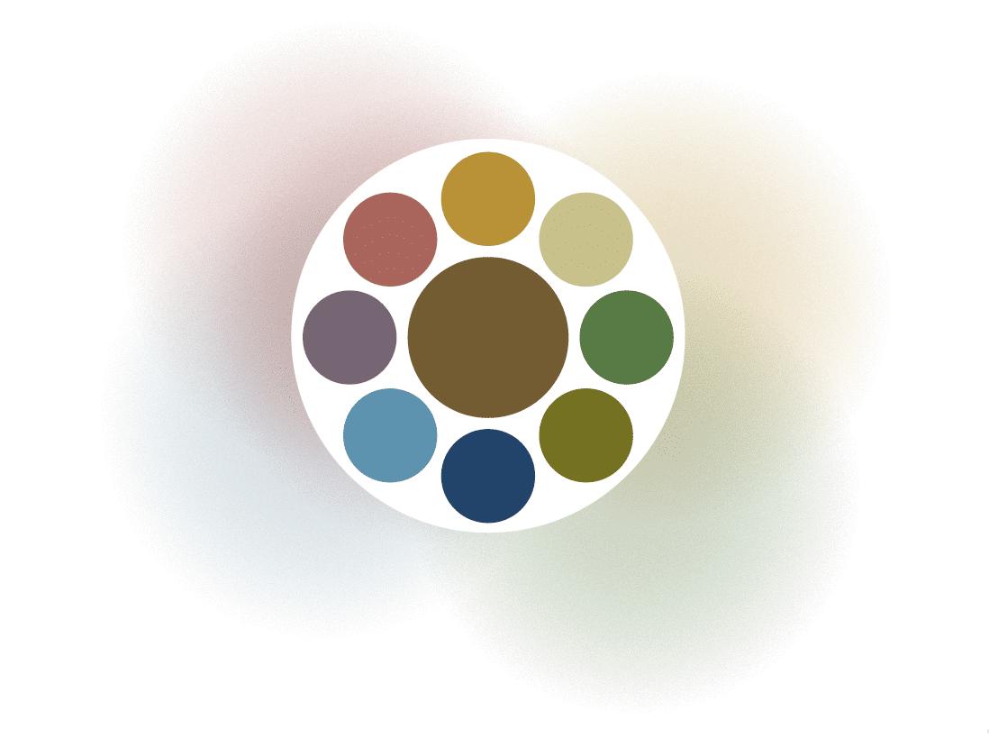 cantharel kleuren